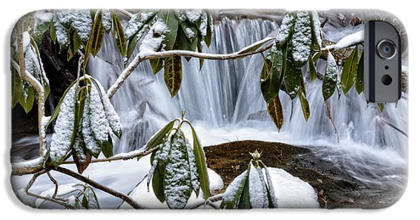 Oak Creek iPhone Cases - Rhododendron and Waterfall iPhone Case by Thomas R Fletcher