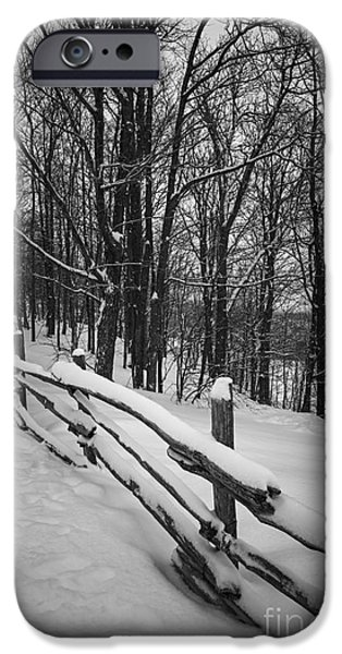 Snowy iPhone Cases - Rural winter scene with fence iPhone Case by Elena Elisseeva