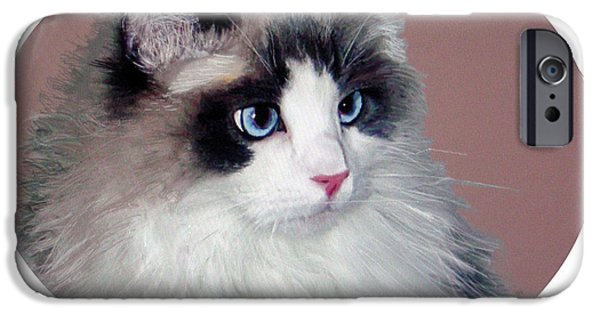 Beautiful Cat Drawings iPhone Cases - Sarah Rag Doll Cat iPhone Case by Jim Hubbard