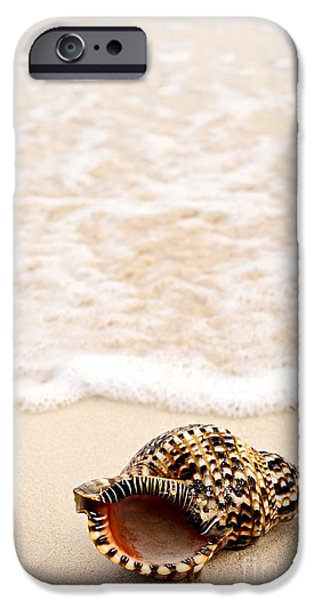 Concept Photographs iPhone Cases - Seashell and ocean wave iPhone Case by Elena Elisseeva