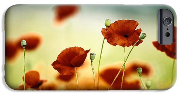 Meadow iPhone Cases - Summer Poppy iPhone Case by Nailia Schwarz