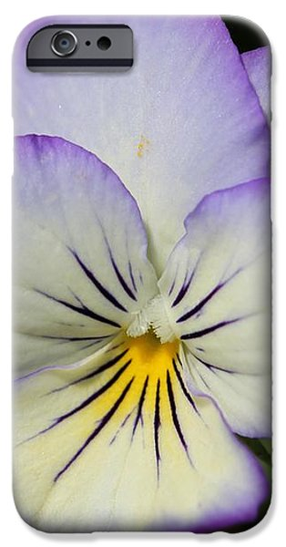 Viola named Sorbet Lemon Blueberry Swirl iPhone Case by J McCombie