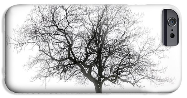 One iPhone Cases - Winter tree in fog iPhone Case by Elena Elisseeva