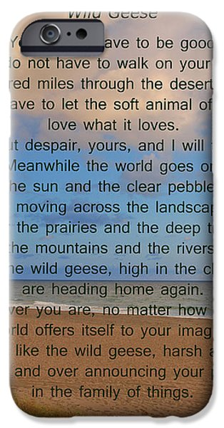 40- Wild Geese Mary Oliver iPhone Case by Joseph Keane