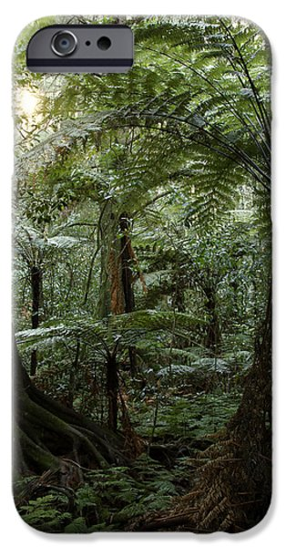 Morning iPhone Cases - Jungle iPhone Case by Les Cunliffe