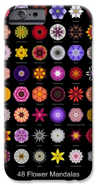 David J Bookbinder iPhone Cases - 48 Flower Mandalas iPhone Case by David J Bookbinder