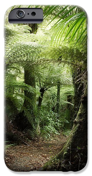 Climate iPhone Cases - Jungle iPhone Case by Les Cunliffe