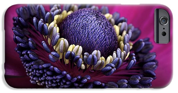 Beauty Mark iPhone Cases - Anemone iPhone Case by Mark Johnson