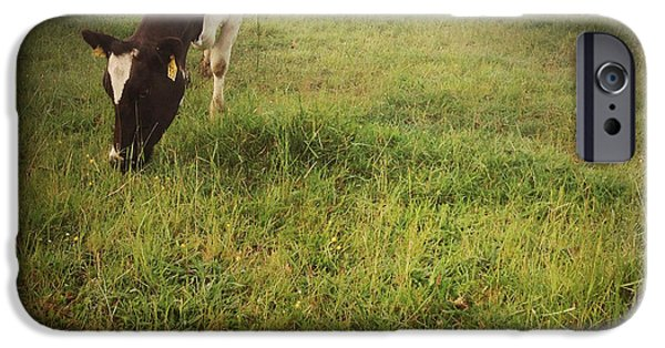 Agricultural iPhone Cases - Cows iPhone Case by Les Cunliffe
