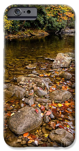 West Fork iPhone Cases - Fall Color Gauley River iPhone Case by Thomas R Fletcher