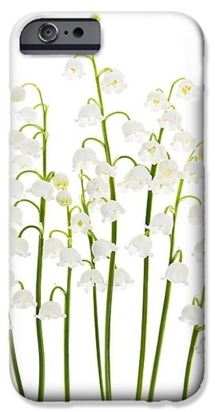 Tender iPhone Cases - Lily-of-the-valley flowers  iPhone Case by Elena Elisseeva