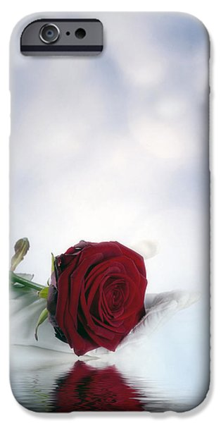 red rose iPhone Case by Joana Kruse