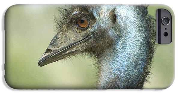 Emu iPhone Cases - Sideways iPhone Case by Fraida Gutovich