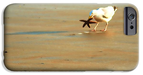 Seagull iPhone Cases - 5 Star Dinner iPhone Case by Sharon Lisa Clarke