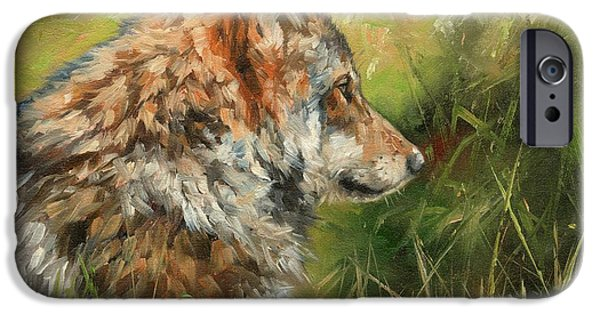 Wild Animals iPhone Cases - Grey Wolf iPhone Case by David Stribbling