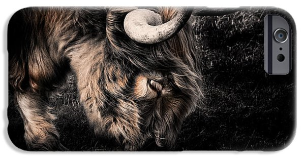 Animal Artwork iPhone Cases - Highland Cow iPhone Case by Ian Hufton