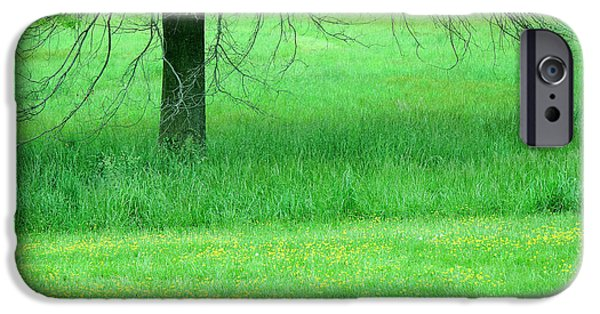 Cora Wandel iPhone Cases - In A Green Field iPhone Case by Cora Wandel