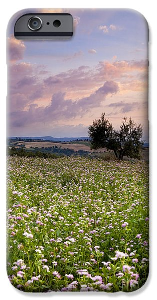 Tuscan Sunset iPhone Cases - Tuscany iPhone Case by Brian Jannsen