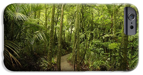 Pathway iPhone Cases - Walking trail iPhone Case by Les Cunliffe
