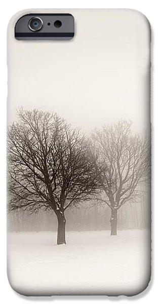 Winter trees in fog iPhone Case by Elena Elisseeva