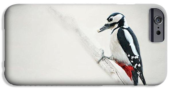 Woodpecker iPhone Cases - Woodpecker iPhone Case by Heike Hultsch