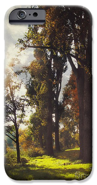 Sun Rays Mixed Media iPhone Cases - Autumn iPhone Case by Angela Doelling AD DESIGN Photo and PhotoArt