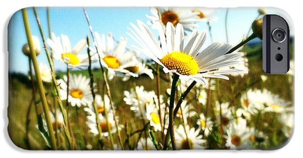 Floral Photographs iPhone Cases - Flowers iPhone Case by Les Cunliffe