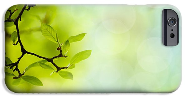 Backdrop iPhone Cases - Spring Green iPhone Case by Nailia Schwarz