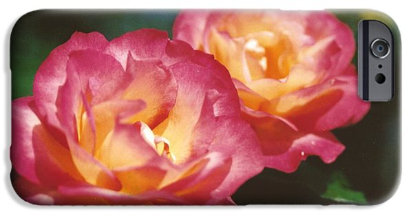 Thinking iPhone Cases - #704 1a Love Roses Double Delight Perfect Together Perfect Moment iPhone Case by Robin Lee Mccarthy Photography