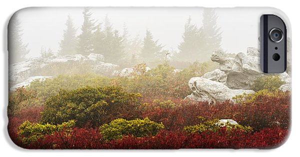 Sod iPhone Cases - Autumn Fog Bear Rocks iPhone Case by Thomas R Fletcher
