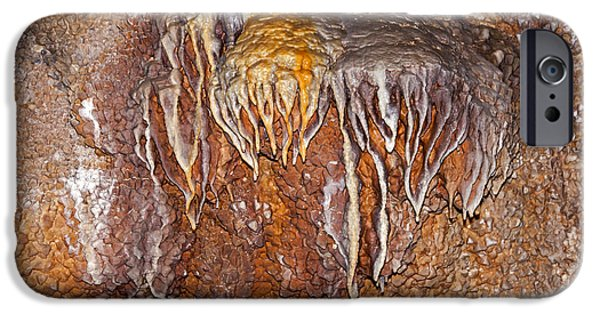Fall iPhone Cases - Jewel Cave Jewel Cave National Monument iPhone Case by Fred Stearns