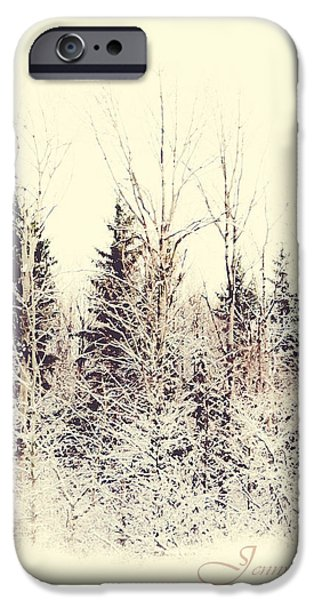 Winter Wonderland. Elegant KnickKnacks from JennyRainbow iPhone Case by Jenny Rainbow