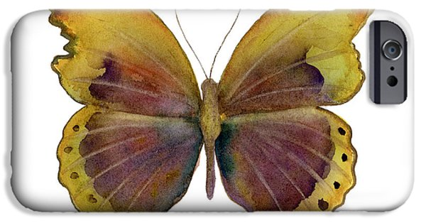Glider iPhone Cases - 84 Gold-Banded Glider Butterfly iPhone Case by Amy Kirkpatrick