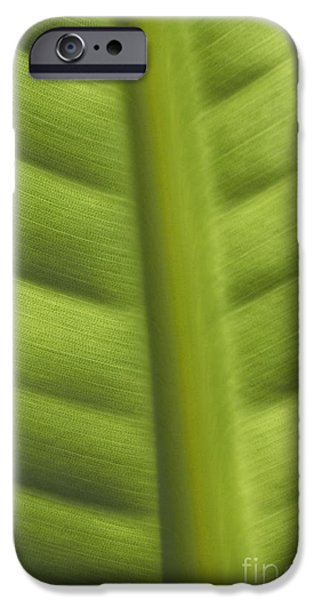 Business Photographs iPhone Cases - Abstract iPhone Case by Tony Cordoza