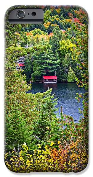 Boathouses iPhone Cases - Fall forest and lake iPhone Case by Elena Elisseeva