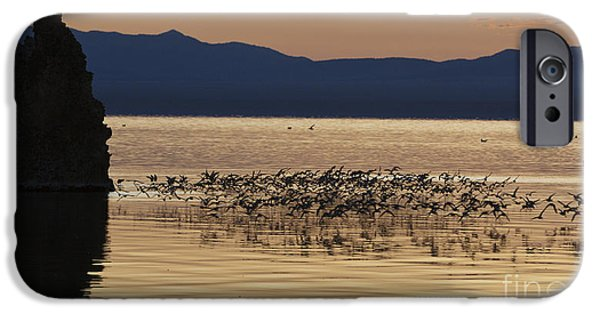 Jason O. Watson iPhone Cases - Mono Lake California iPhone Case by Jason O Watson