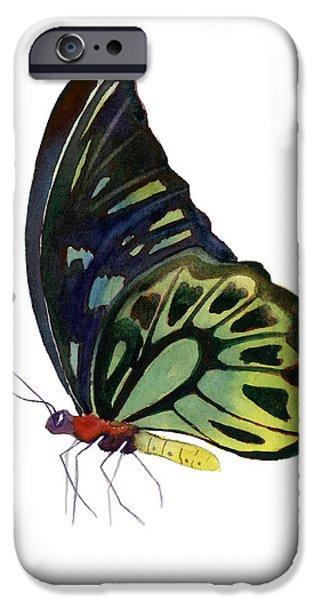 97 Perched Kuranda Butterfly iPhone Case by Amy Kirkpatrick