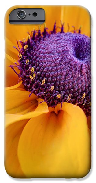 Botanical iPhone Cases - A Beautiful Black Eye iPhone Case by Heidi Smith