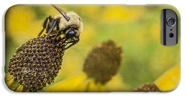 Jeff Swanson iPhone Cases - A Bees Paradise iPhone Case by Jeff Swanson