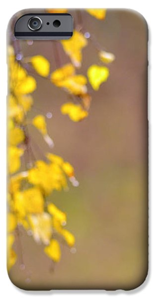 A birch at the lake iPhone Case by Toppart Sweden