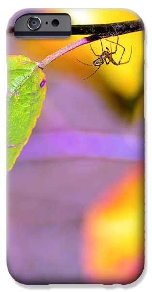 A branch with leaves iPhone Case by Toppart Sweden