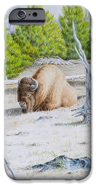 Nature Scene Paintings iPhone Cases - A Buffalo Sits in Yellowstone iPhone Case by Michele Myers