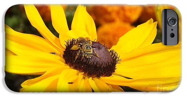 Ocean Sunset iPhone Cases - A Busy Bee iPhone Case by Keegan Hall