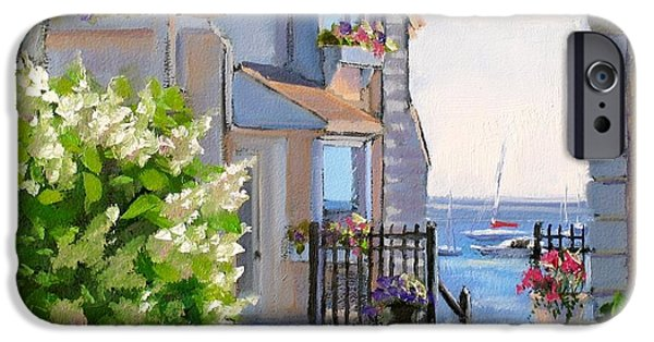 Province iPhone Cases - A Cape Cod Paradise iPhone Case by Laura Lee Zanghetti