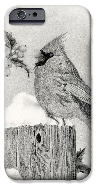 Snowy Drawings iPhone Cases - A Cardinal And Holly iPhone Case by Sarah Batalka