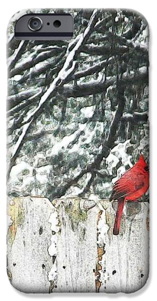 Painterartistfin iPhone Cases - A Christmas Cardinal iPhone Case by PainterArtist FIN