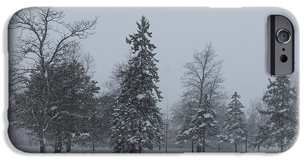 Winter Storm iPhone Cases - A Cold December Morning - Snowstorm in the Park iPhone Case by Georgia Mizuleva