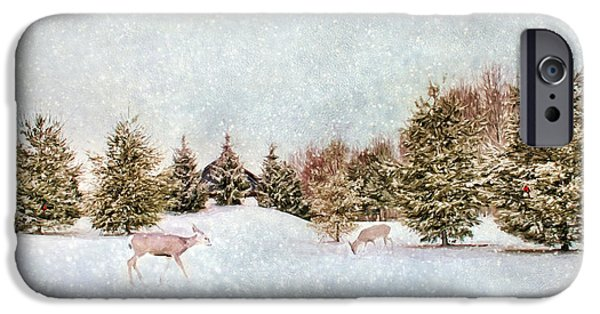 Wintertime iPhone Cases - A Cold Winters Day iPhone Case by Darren Fisher