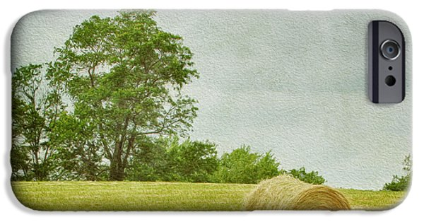 Crops iPhone Cases - A Day at the Farm iPhone Case by Kim Hojnacki