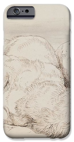 A Dead Stag iPhone Case by Sir Edwin Landseer